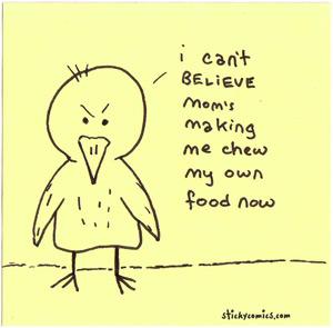 angsty bird