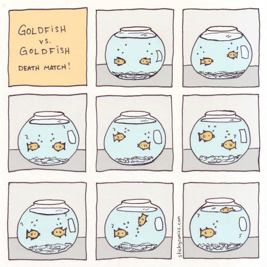 goldfish vs. goldfish deathmatch