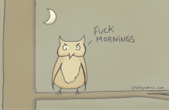 I partied all night with this awesome owl. Fuck mornings.