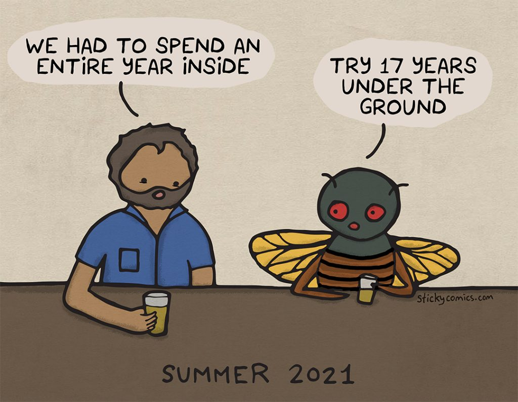 """Summer 2021. Man and cicada are at the bar. Man says, """"We had to spend an entire year inside."""" Cicada says, """"Try 17 years under the ground."""""""